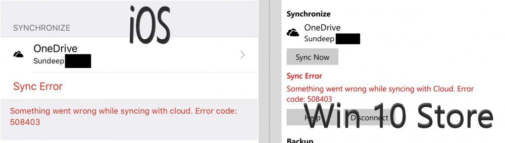 Enpass Sync Error 508403.jpg